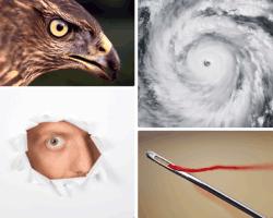 apensar huracan águila aguja