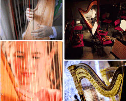 Apensar instrumentos de cuerda