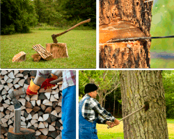 Apensar cortando madera