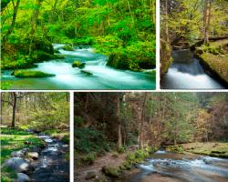 Apensar rios