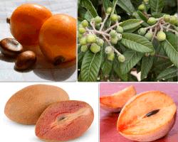 apensar frutas
