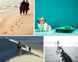 Apensar caminando en la playa