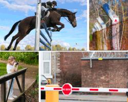 Apensar caballo saltando obstáculo