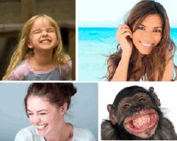Apensar chimpancé