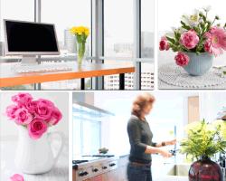 Apensar flores computadora