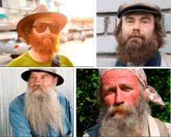 Apensar barba