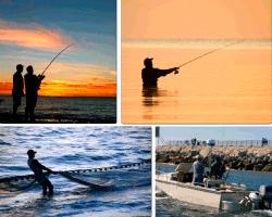 apensar pescando