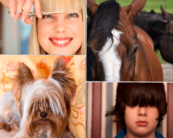 apensar pelo de caballo